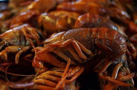 crawfish  texarkana
