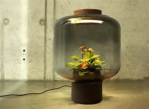 these lamps let you grow plants anywhere even in With led plant floor lamp