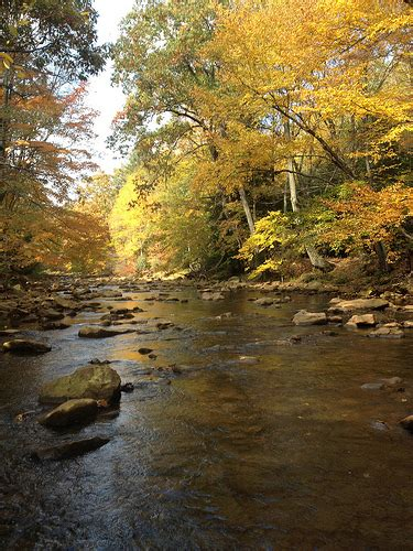 north branch potomac river