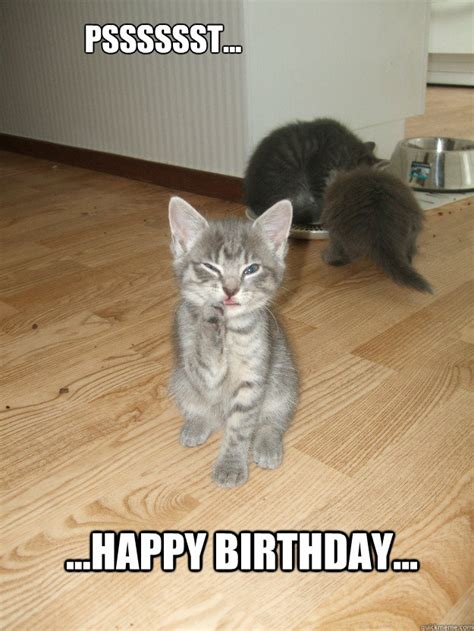 Happy Kitten Meme - top birthday cat memes images and gif 9 happy birthday