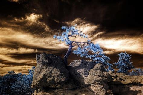 Infrared HDR Palmer Park Colorado Springs | HDR IR. IR ...