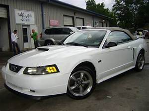 2001 Ford Mustang GT CONV. Leather 1 Owner AUTO MACH 460 FAST! MUSCLE! for Sale in Houston ...