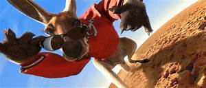 Pin Kangaroo Jack Movie Gallery Stills And Pictures on ...