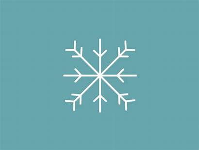 Snowflake Wanna Snow Did Types Snowflakes Different