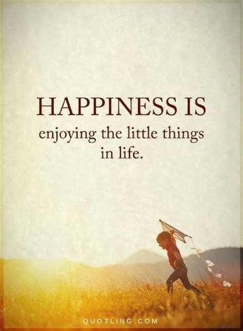 happiness quotes happiness is enjoying the things