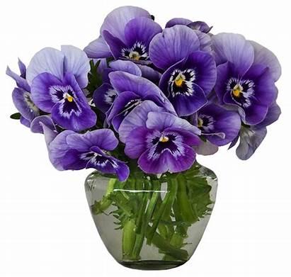 Vase Bouquet Clipart Violets Flowers Transparent Yopriceville