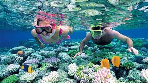 snorkeling tapi tak bisa renang ikuti