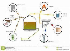 Biogas Diagram Stock Images