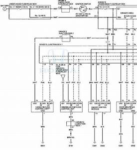 Honda Accord  Circuit Diagram - Multiplex Integrated Control System - Body Electrical