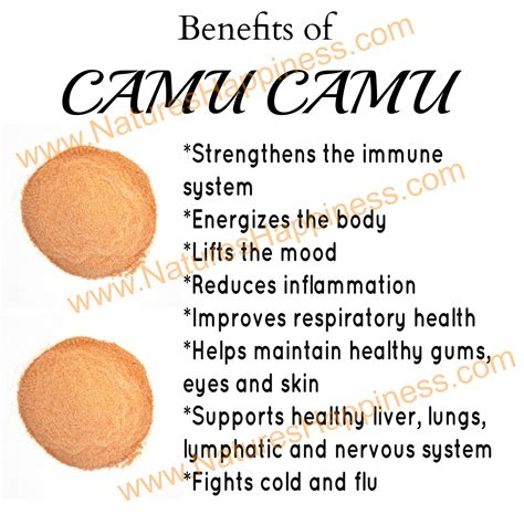 Organic Camu Camu Berry Powder   Natures Happiness Blog   News, Tips, Reviews & Recipes