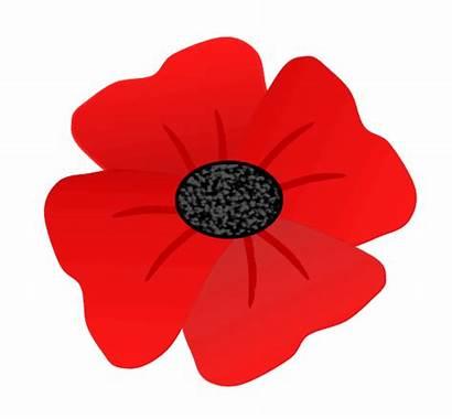 Remembrance Clipart Poppy Clip Veterans Veteran Clipground