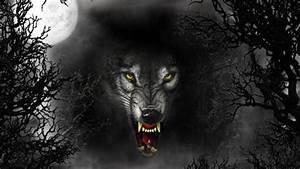 Free Download Werewolf Wallpapers   PixelsTalk.Net