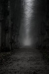 The dark, ominous path! | Gateways, Pathways and Portals ...  Dark