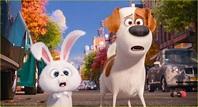 'Secret Life of Pets' Cast - Meet the Voices of the ...