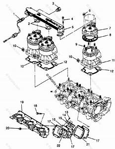 Polaris Watercraft 1996 Oem Parts Diagram For Cylinder