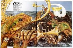 ANIMALIA - Children's picture book by author Graeme Base