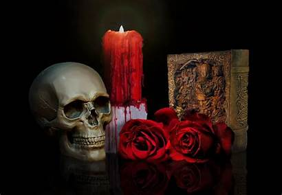 Skull Roses Wallpapers Candle Rose Skulls Flowers