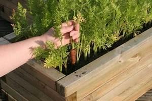 Carré Potager Gamm Vert : comment faire un carr potager terrasse gamm vert ~ Dailycaller-alerts.com Idées de Décoration