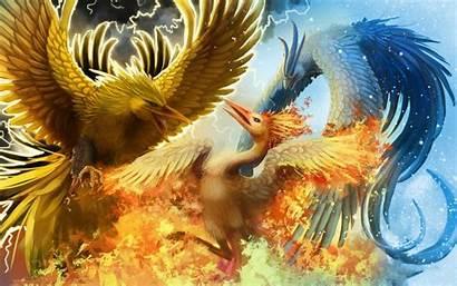 Phoenix Bird Wallpapers Background Desktop Pixelstalk Getwallpapers