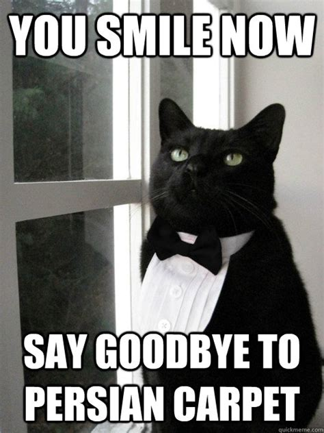 Goodbye Cat Meme - goodbye cat meme