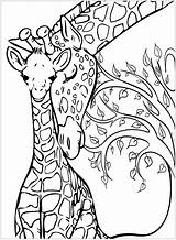 Giraffe Coloring Pages Giraffes Printable Mother Adult Animal Mom Mandala Adults Tree Background Christmas Justcolor Drawings Sketches Animals Nature sketch template