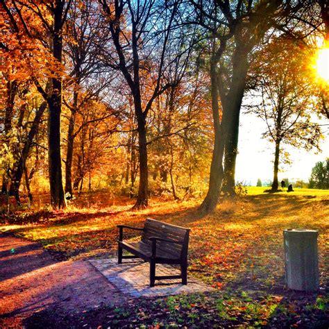 goldener november typisch hamburch
