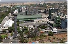 plant heg limited