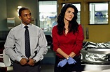 Thoughts from a TV Geek: Lee Thompson Young (Frost on ...