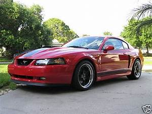2003 Ford Mustang Mach 1 Whipple Cobra | Ford Mustang