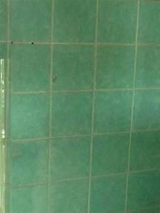 Carrelage Vert D Eau : charmant carrelage vert eau et salle de bain et 2017 des photos miroir ~ Melissatoandfro.com Idées de Décoration