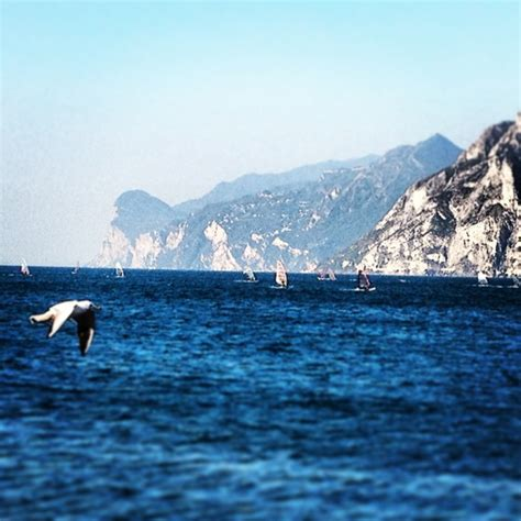lago gabbiano gabbiano piu veloce delle vele viaggi vacanze e