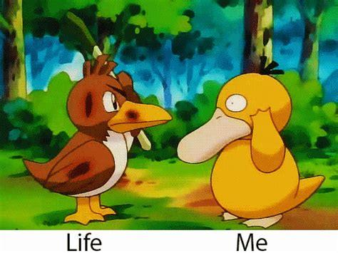 Psyduck Meme - psyduck meme tumblr