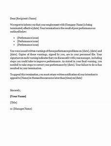 Functional Resume Word Template Sample Employee Resignation Agreement Termination Letter