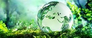 Top Environmental Safety Organizations In Virginia