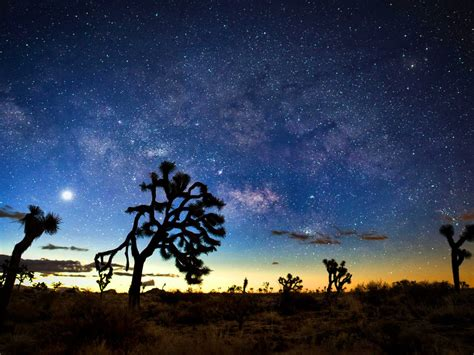 Milky Way At Night Desert Landscapes With Rocks And Cactus
