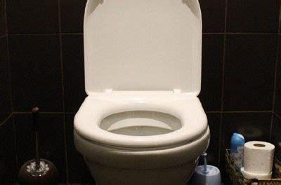les 25 meilleures id 233 es de la cat 233 gorie d 233 boucher toilette sur d 233 boucher les