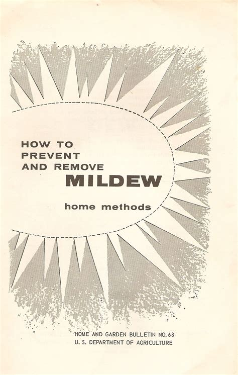 how to prevent mildew how to prevent and remove mildew home methods by us department of agriculture 1974