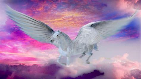 fantasy wallpaper hd unicorns horse castles waterfalls mountains flowers birds wallpaperscom