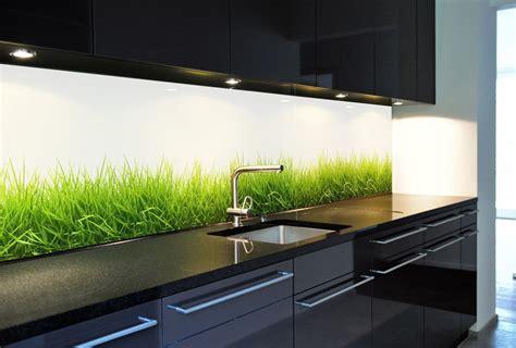 Küchenrückwand Aus Glas, Motiv Gras, Endlos Verlegbar