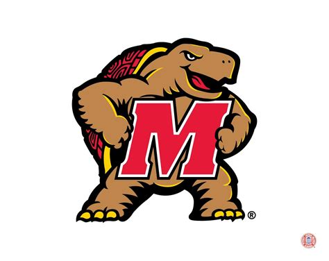 maryland terrapins mascot logo college sports maryland