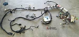 Subaru Stand Alone Wiring Harness