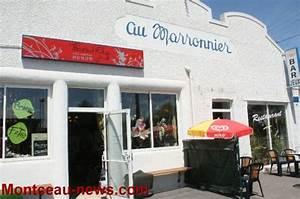 La Boutique Insolite : insolite et rare charolais news charolais news ~ Melissatoandfro.com Idées de Décoration