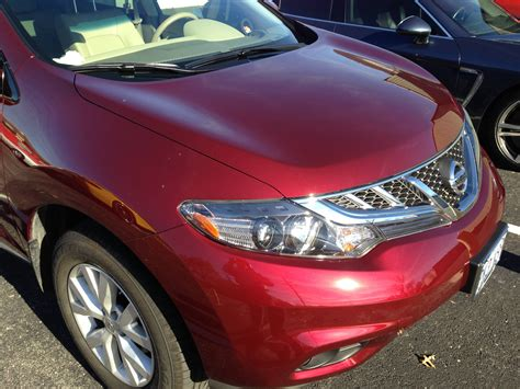 nissan murano xpel paint protection clear auto bra st