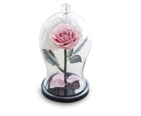 ewige im glas ewige im glas individuelle gravur festliche boxen