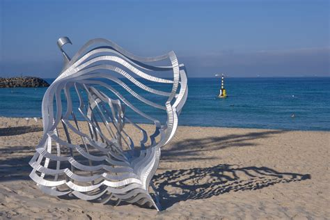 sculpture   sea bondi  cottesloe  images sculpture   sea
