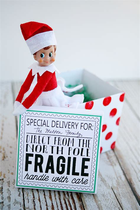 elf   shelf returns eighteen