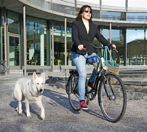 goda tips foer att cykla med hunden