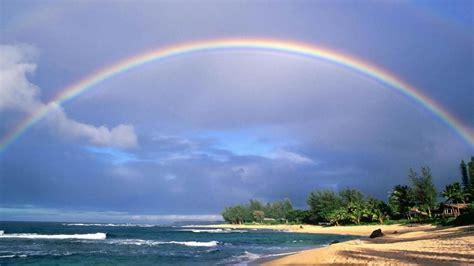 trees  beach sand  rainbow   beach hd rainbow