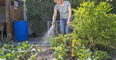 Garten Pflanzen Ohne Gießen by Pflanzen Richtig Gie 223 En Die Wichtigsten Tipps Mein
