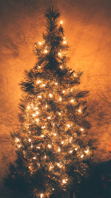 Tree Lights Iphone Wallpaper by Iphonepapers Apple Iphone Wallpaper Nv79